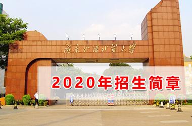 广东外语外贸大学高等继续教育学院电商物流学院2020年自主招生